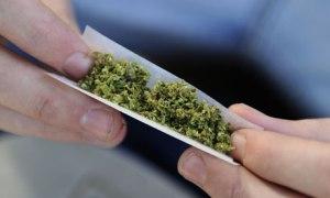 A-man-rolls-a-cannabis-jo-007